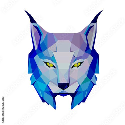 Fototapeta low poly portrait of a lynx in cold tones, , sketch vector graphic colour illust