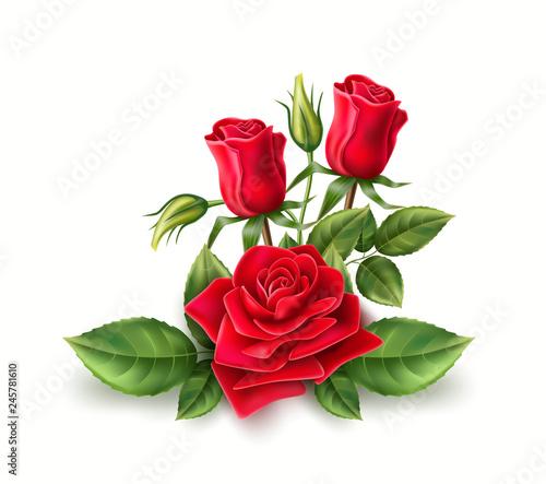 Vector 3d realistic red rose elegant bouquet