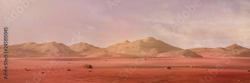 Billede på lærred landscape on planet Mars, scenic desert surrounded by mountains on the red plane