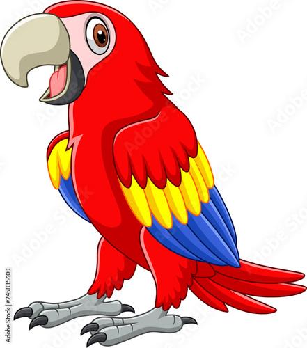 Fototapeta premium Cartoon funny macaw