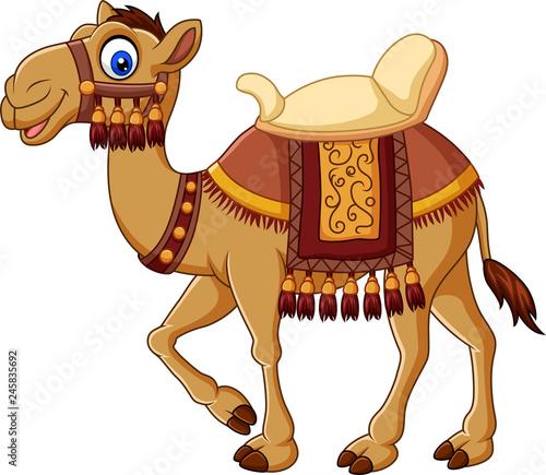 Canvas Print Cartoon funny camel with saddlery