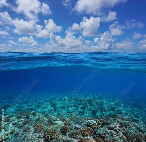 Underwater coral reef seabed with blue sky and cloud, split view half over and under water surface, Pacific ocean, French Polynesia
