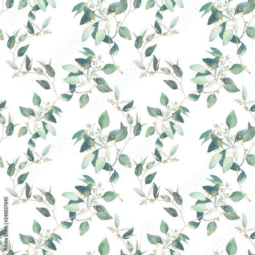 Akwarela eukaliptusa oddziałów wzór. Ręcznie malowane kwiatowy powtarzaną teksturę na białym tle.