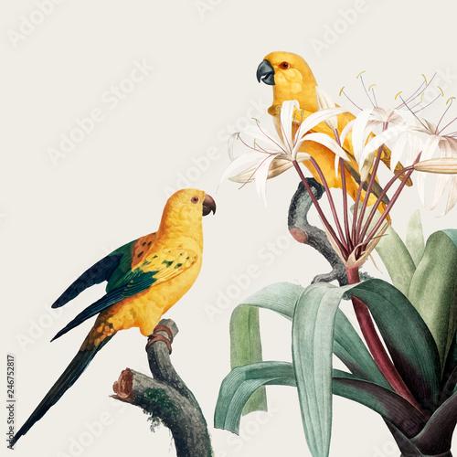 Fototapeta premium Ara tropikalna ilustracja