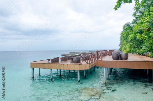 Obraz na płótnie island of Maldives of Fihalhohi beautiful landscape of a palm tree and ocean