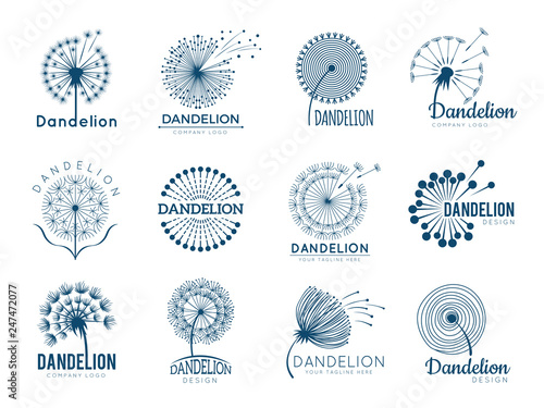 Botany dandelion logo. Herbal leaves flowers vector illustrations for brand design. Brand and logo with dandelion plant silhouette, logotype of company