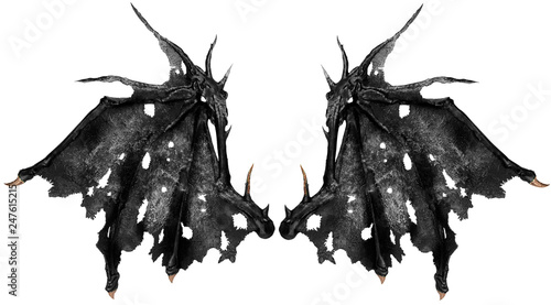 Valokuva Close up on dragon wings isolated on white background. Cut out.