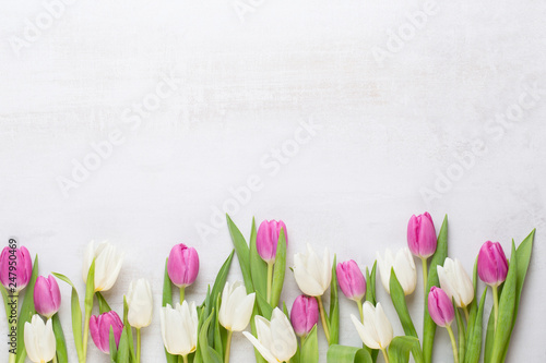 Fototapeta premium Wiosną kartkę z życzeniami, pastelowe kolory tulipanów na szarym tle.