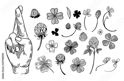 Cuadros en Lienzo Crossed fingers and a four-leaf clover set
