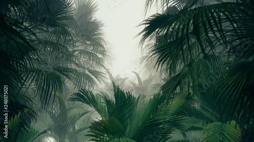Obraz na płótnie 3D illustration Background for advertising and wallpaper in jungle scene