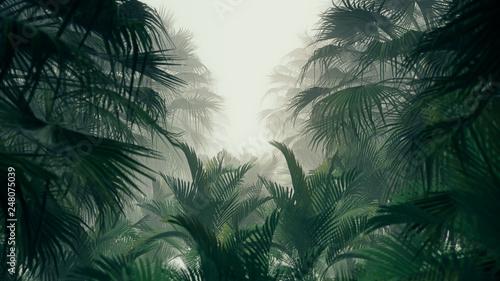 Naklejki na drzwi 3D - Ciemna dżungla