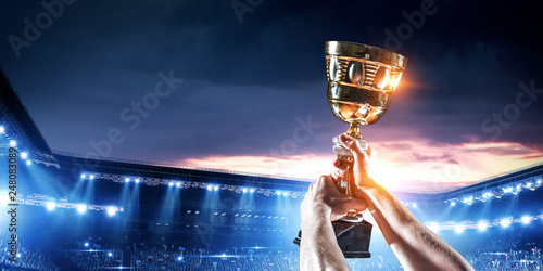 His great victory Fototapeta