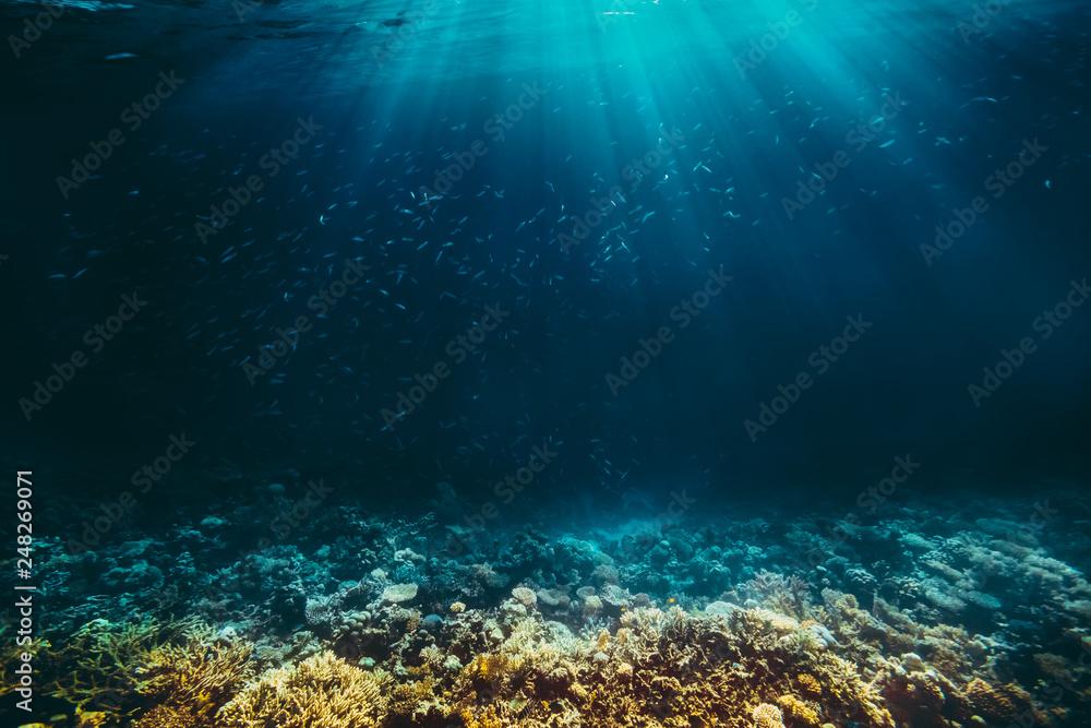 a background sand on the beach underwater