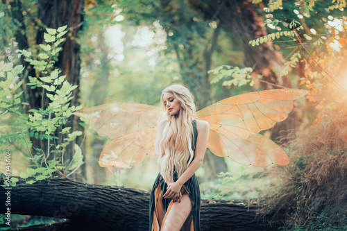 Photo real fairy magic goddess nature transparent wings costume fly dense forest log l