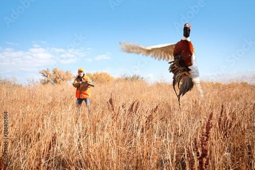 Photo A male pheasant rooster takes flight a female pheasant hunter takes aim with her shotgun