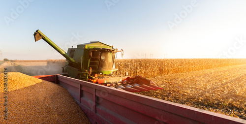 Pouring corn grain into tractor trailer Fototapete
