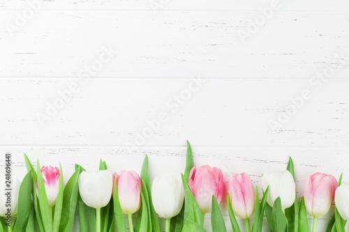 Fototapeta premium Kolorowe kwiaty tulipanów