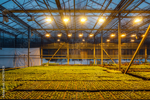 Canvas-taulu Modern hydroponic greenhouse with complex climate control system for cultivation of agricultural and ornamental plants