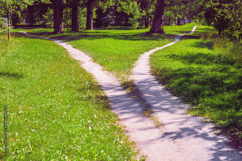 Canvas Print Forked footpath in the park, diverging in different directions