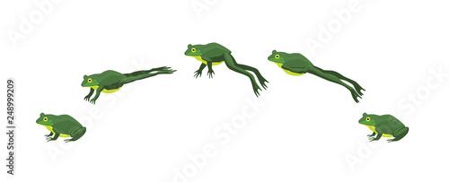 Canvas Print Frog Jumping Animation Sequence Cartoon Vector Illustration