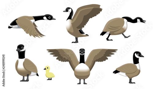 Tablou Canvas Canada Goose Flying Cartoon Vector Illustration