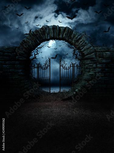 Obraz na płótnie scary gate