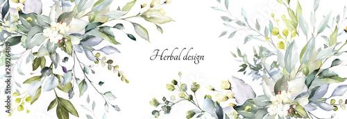 projekt botaniczny. poziome banery ziołowe na białym tle na zaproszenia ślubne, produkty biznesowe. baner internetowy z liśćmi, ziołami