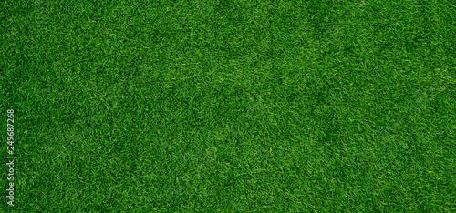 Obraz na plátně grass field background, green grass, green background