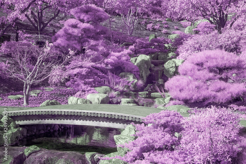 Canvas Print Peaceful Garden Bridge and Foliage in Infrared Color