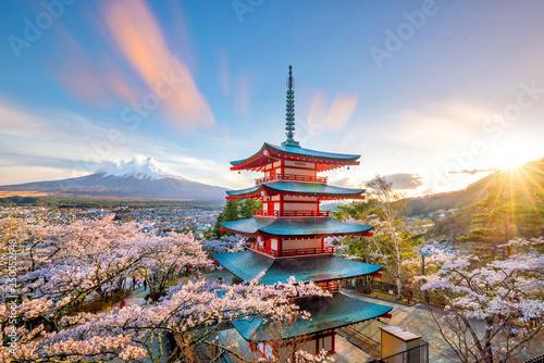 Obraz na plátně Mountain Fuji and Chureito red pagoda with cherry blossom sakura