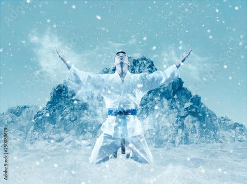 Martial arts masters, winter background Fototapet