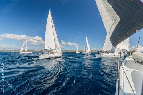 Fototapeta Sailing regatta yachts competition