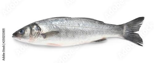 Photo Tasty fresh seabass fish on white background