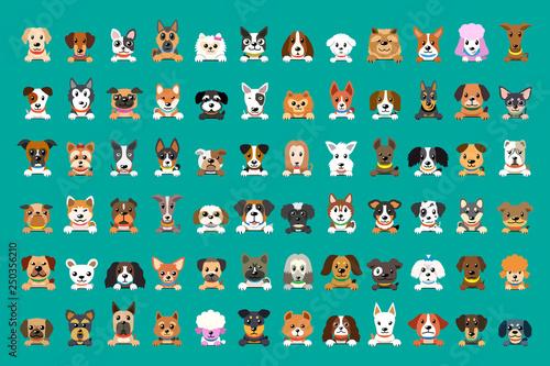 Fényképezés Different type of vector cartoon dog faces for design.