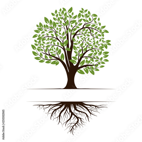 Canvas Print Logo of a green tree with roots and leaves