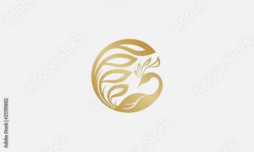 Stampa su Tela peacock logo design