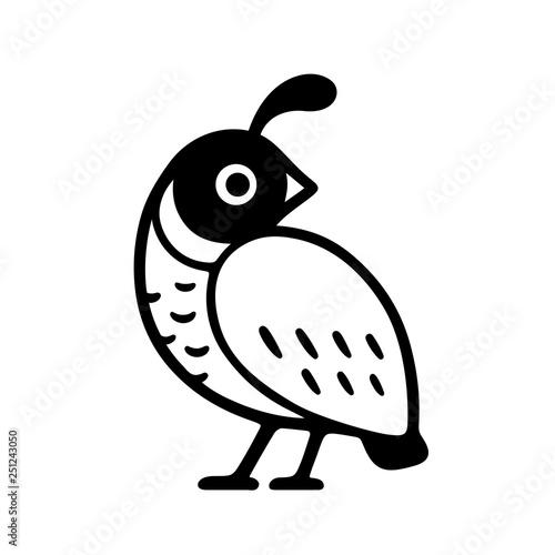 Fototapeta California quail drawing