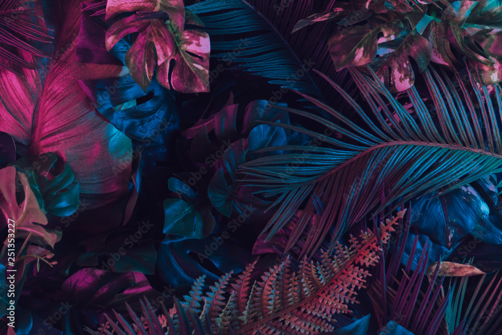 Kreatywny układ fluorescencyjny wykonany z tropikalnych liści. Płaskie świeciły neonowe kolory. Koncepcja natury. <span>plik: #251353227 | autor: Zamurovic Brothers</span>