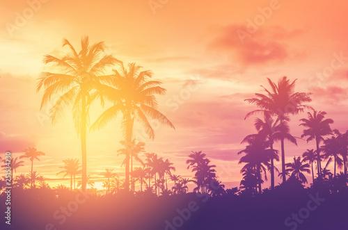 Obraz na płótnie Copy space of tropical palm tree with sun light on sky background