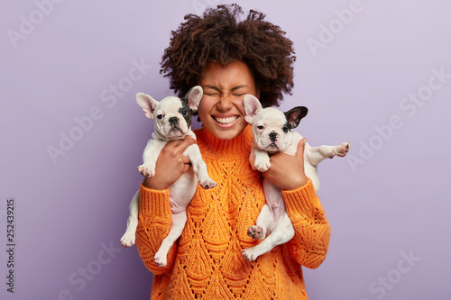 Stampa su Tela Isolated shot of joyful pleased dark skinned lady rejoices having two puppies with black ears and noses, likes animals, wears orange oversized sweater, isolated over purple background