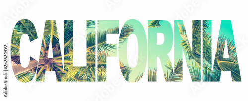 Fényképezés Word California with palm trees on white background