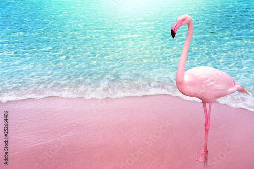 Wallpaper Mural pink flamingo bird sandy beach and soft blue ocean wave summer concept backgroun