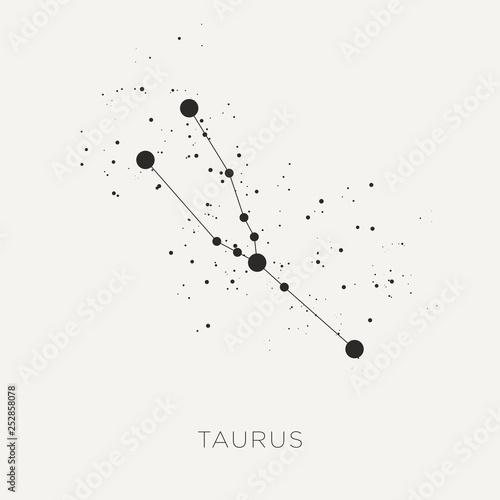 Fotografie, Obraz Star constellation zodiac taurus black white vector