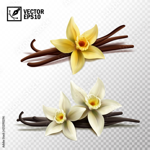 Wall mural 3d realistic vector isolated vanilla sticks and vanilla flowers in yellow and white
