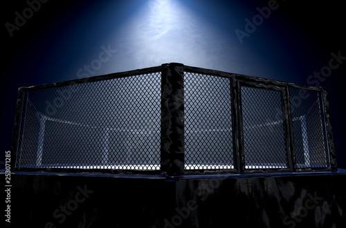 MMA Cage Night Fototapeta