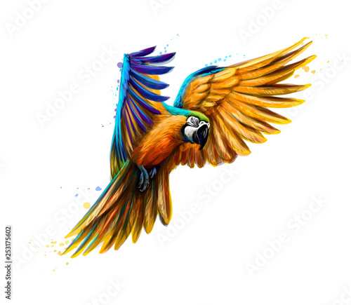 Fotografia Portrait blue-and-yellow macaw in flight from a splash of watercolor