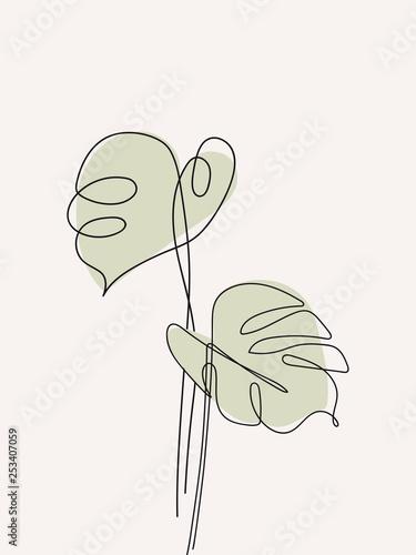 Valokuvatapetti Eucalyptus monstera leaves continuous line drawing