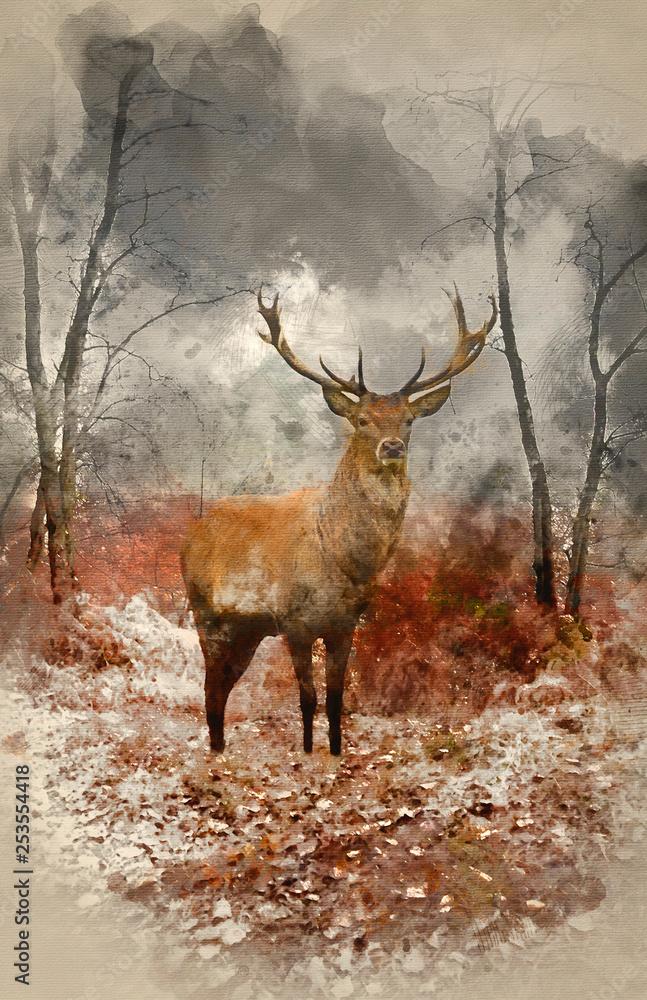 Akwarela z jelenia jelenia w mglisty mglisty krajobraz lasu jesienią o świcie <span>plik: #253554418 | autor: veneratio</span>