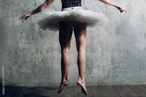Vászonkép Ballerina female