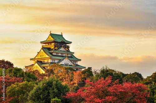 Fototapeta premium Burg Osaka, Japonia